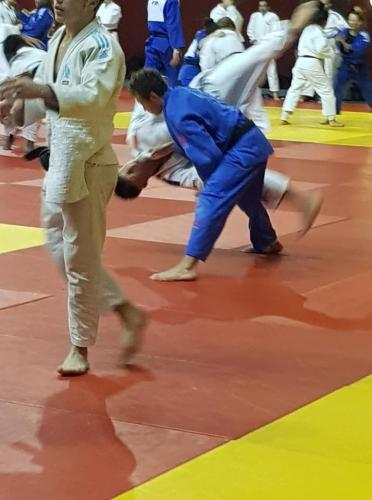 Josh, Institute of Judo, Paris